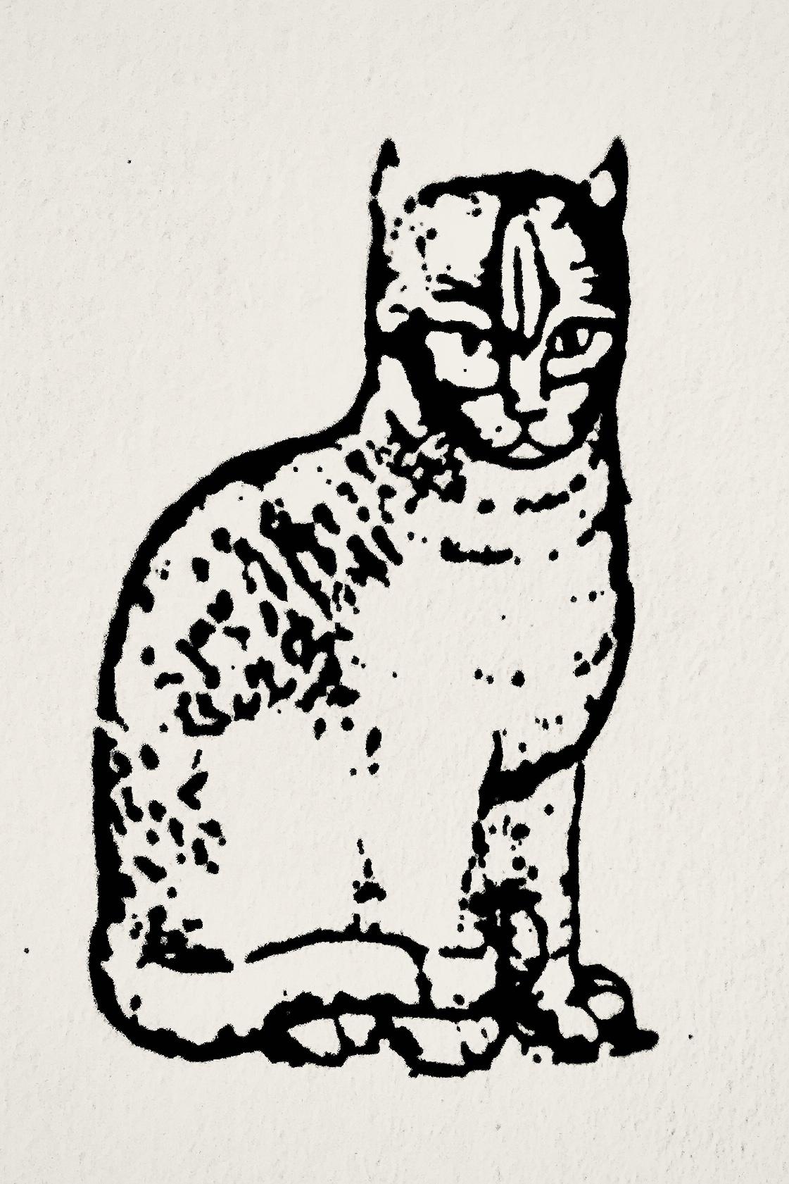 Mariscat Cat